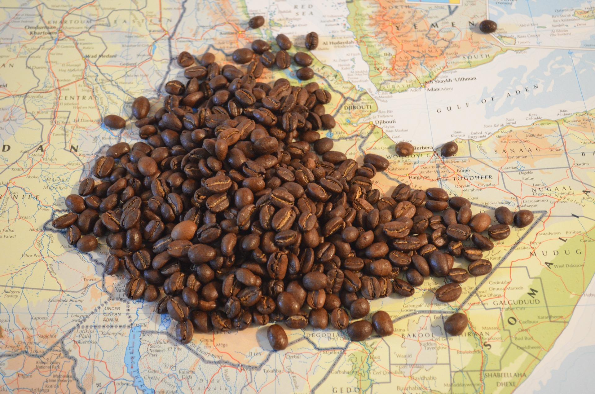 Probar el mejor café en Etiopía