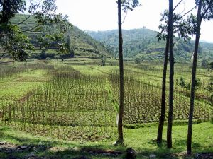Главные города Руанды